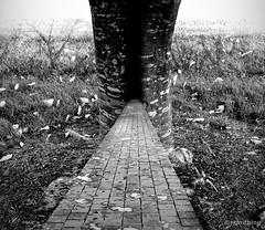 A Subtle Kind Of Crossroads