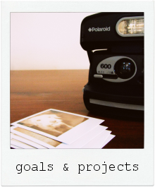 goals & projects