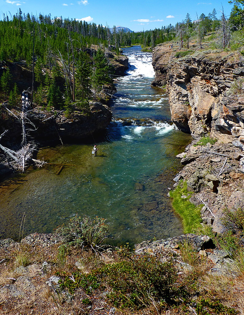 There will be very little frivolity in the countenance for Yellowstone park fishing report