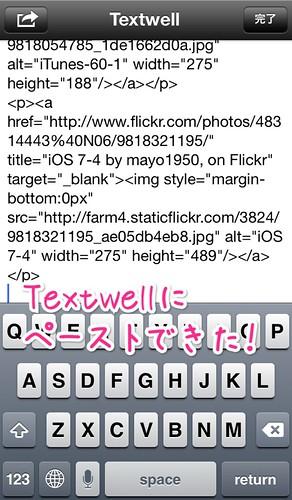 Flickr画像-11