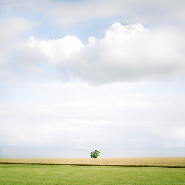 Amazing minimalist photography by Laura Vanzo