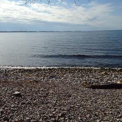 Looking toward Wolfe Island. Happy Thanksgiving. #gobble #canada