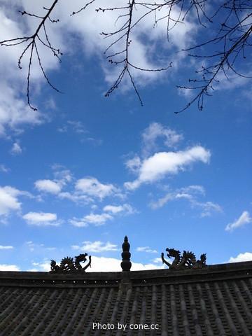 蓝得令人发指的天空
