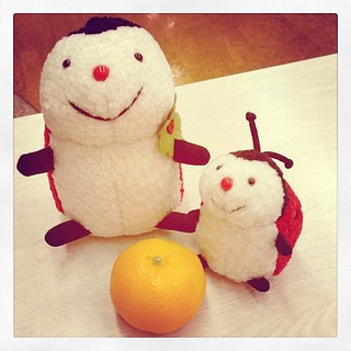 #plush  ladybirds
