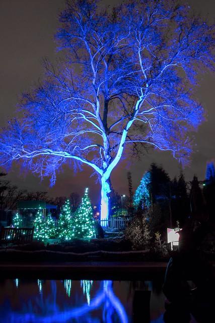 Missouri Botanical Garden Garden Glow Flickr Photo Sharing