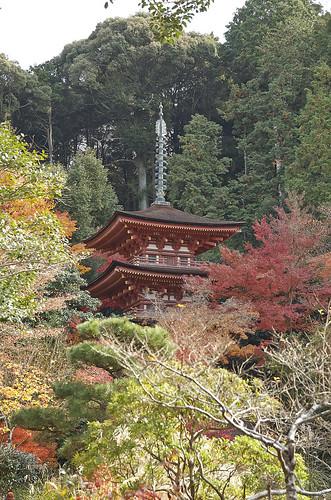 【写真】2013 紅葉 : 浄瑠璃寺/2019-08-22/IMGP3561