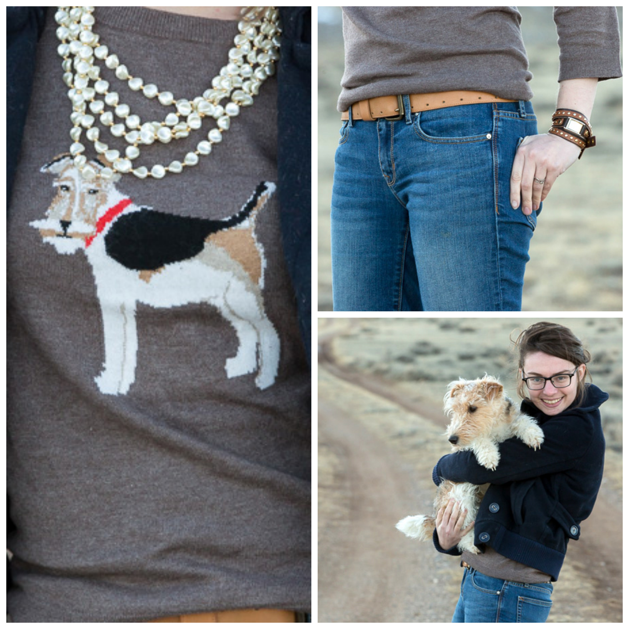 Fox terrier, never fully dressed, withoutastyle, sweater, joules, dog,wyoming,