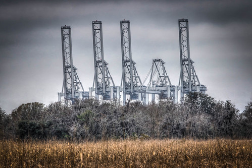georgia southcarolina marsh wetland savannahriver savannahnationalwildliferefuge portwentworth containercranes georgiaportsauthority