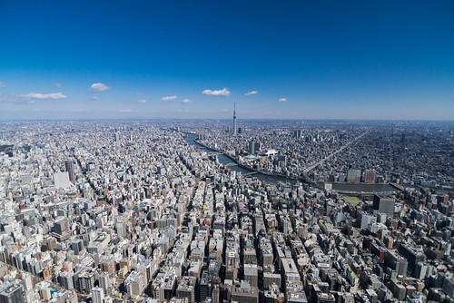 Aerial View of Tokyo with Skytree in Distance