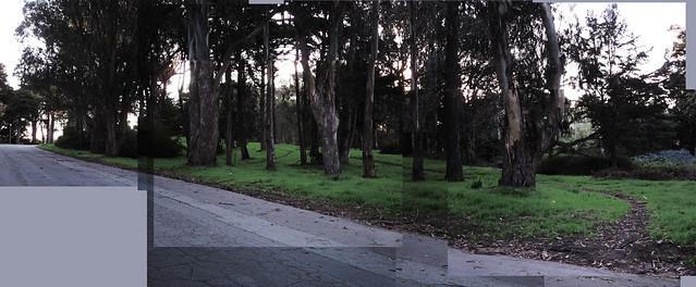 golden gate park walking paths