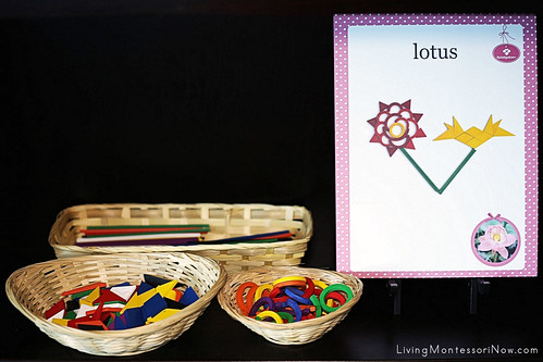 Lotus Creation Activity