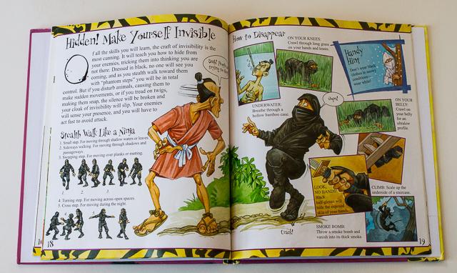 ninja (5 of 6)