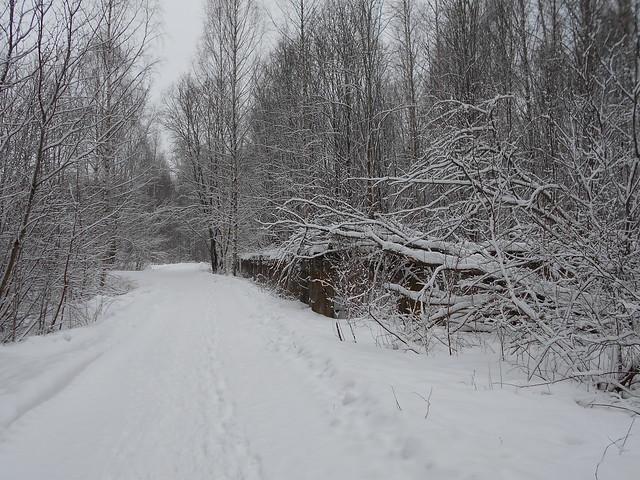 Luminen maisema Varikonniemellä Hämeenlinnassa 1.2.2015