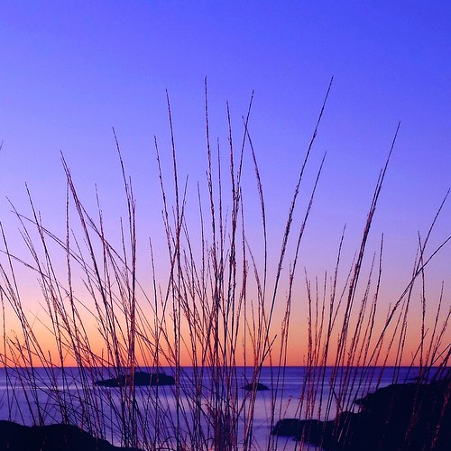 blue sea sky orange nature water silhouette yellow norway sunrise landscape rocks colorful purple bright horizon straws tjøme verdensende