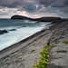 Gray Whale Rock by Juan Todea