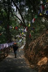 Kathmandu and Around - day 3