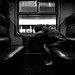 Morning train [explored] by marikoen