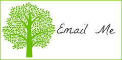 Email Button 2