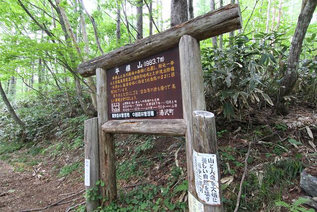 20150607-仙ノ倉山Y-0170.jpg