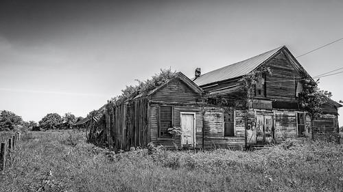 old blackandwhite bw abandoned monochrome fence us blackwhite wooden store weeds texas unitedstates egypt derelict wharton