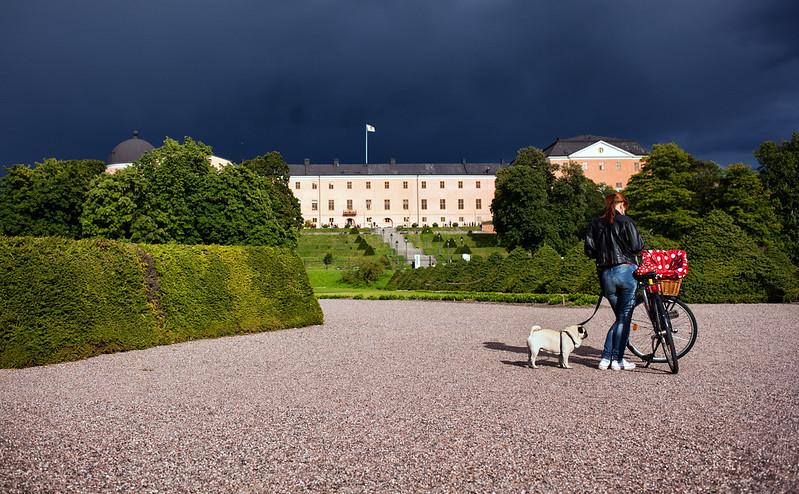 Uppsala slott, Kulturnatt 2012