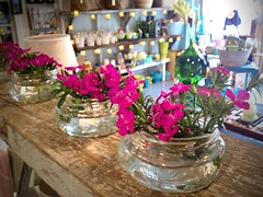 Squat Mason Jar Flower Display at Nutmeg