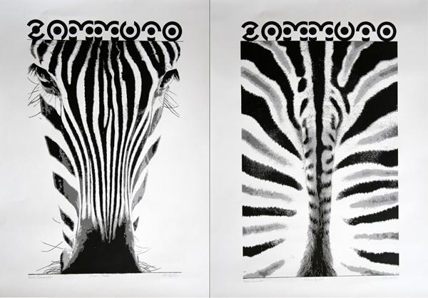 zebra posters 600