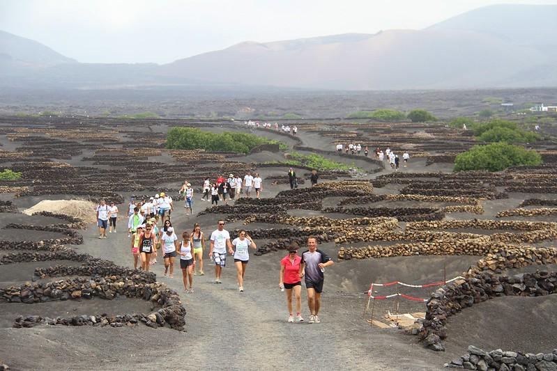 Quinta edición de la carrera Lanzarote Wine Run