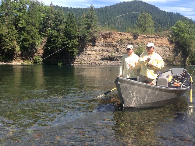 The caddis fly oregon fly fishing blog mckenzie river for Mckenzie river fishing