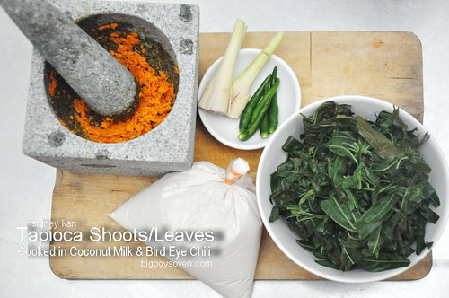 Tapioca Leaves Cooked in Coconut Milk 2