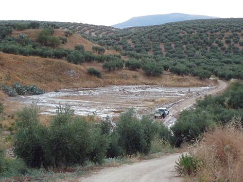Salinas de Martos