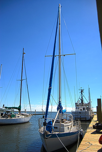 Joys New Jib Sail-4