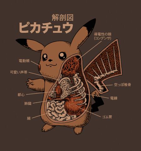 Pokémon anatomy chart