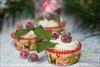 Festive Cranberry Cupcakes