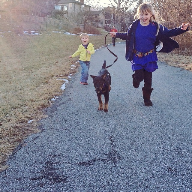 Lucky kids, lucky dog. #365grateful #instateddy #teddygram #puppy #rottie