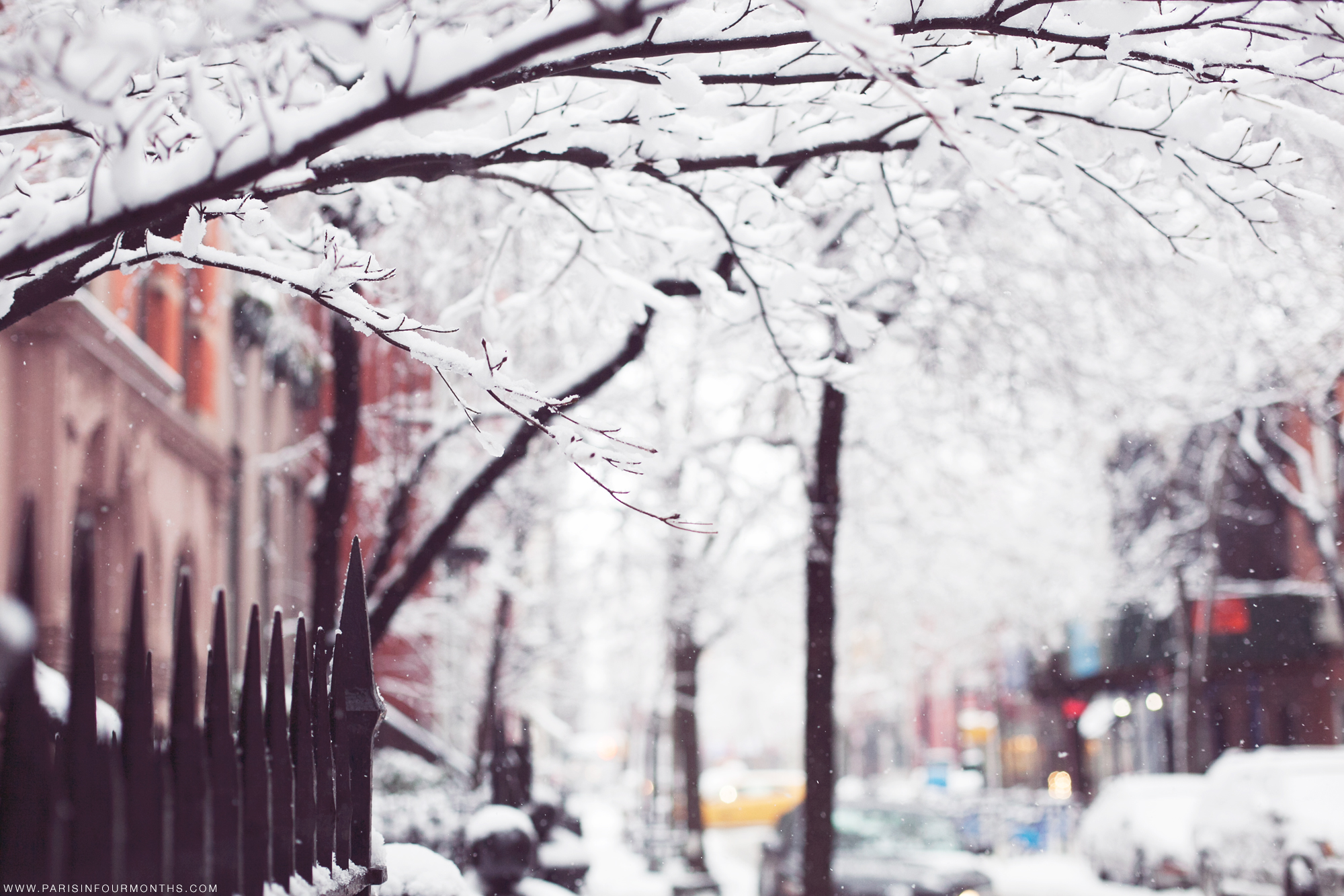 Winter Wonderland in New York