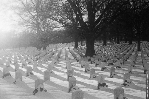 Arlington Cemetery In Snow