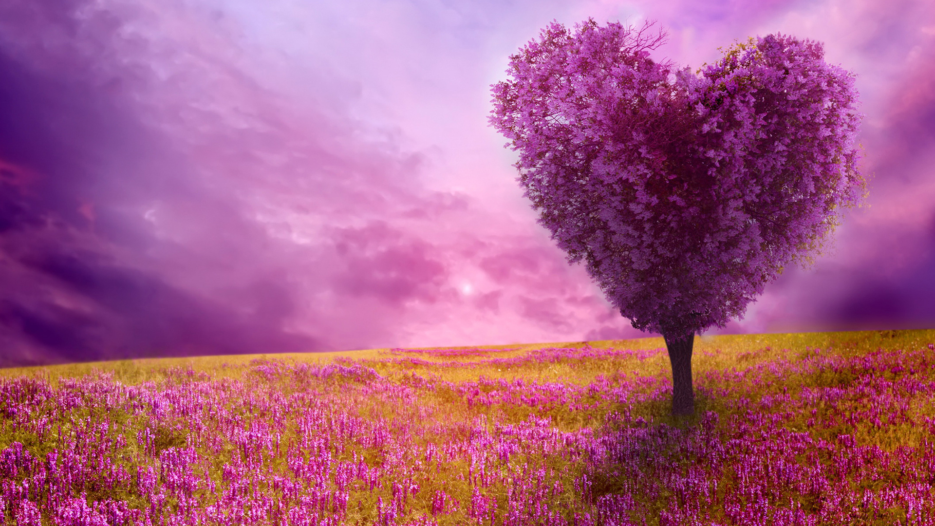 Love Tree - Awesome Spring Wallpapers