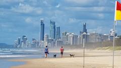 Gold Coast _D805131 - 2