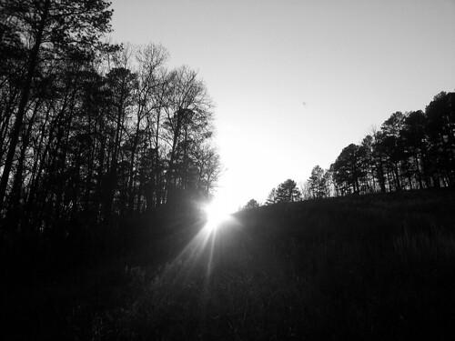 trees bw nature georgia trails sunsets samsunggalaxy3 flickrandroidapp:filter=none rockdalerivertrail