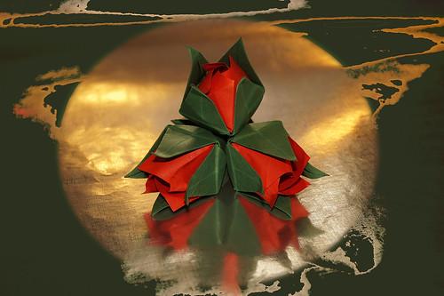 Origami Old Rosebuds (Carlos Bocanegra)