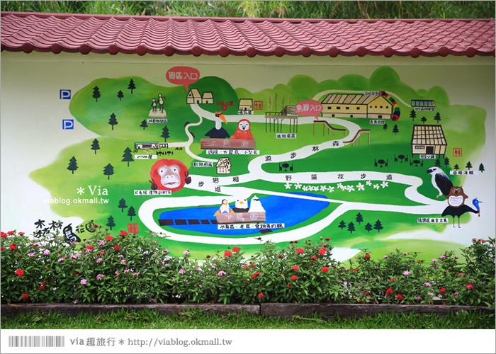 【新竹景點推薦】森林鳥花園~親子旅遊的好去處!在森林裡鳥兒與孩子們的樂園10