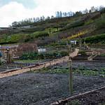 Cornwall 2012-8795