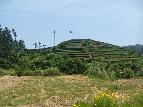 Fujian-Wuyi-Xingcun-village (3)