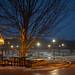 Quiet Night on Campus