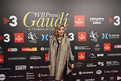 Catifa vermella VII Premis Gaudí (20)