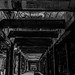 From the dark basement by Kvse