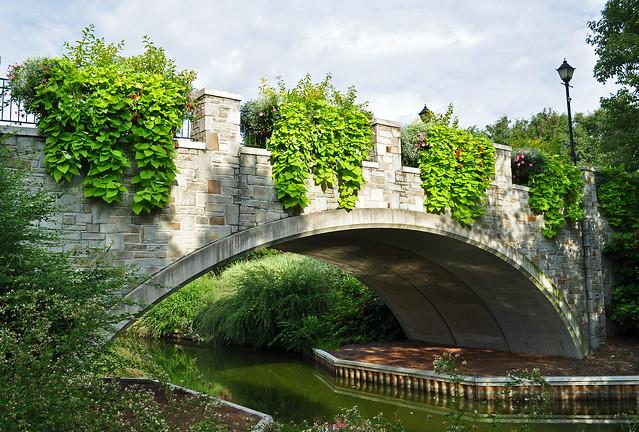Rose Garden Bridge (3)