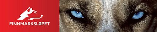 Finnmarkslopet Logo / Husky Augen