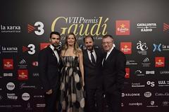 Catifa vermella VII Premis Gaudí (5)
